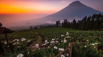16 Wisata Jawa Tengah Terpopuler yang Wajib Dikunjungi, dari Alam Hingga Budaya